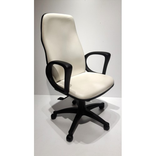 Executive Low Back Chair EEC 527